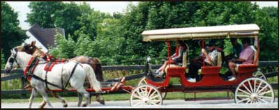 private carriage tour