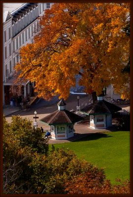 Mackinac Island fall photos show a richness that a Mackinac Island vacation in the fall can provide.