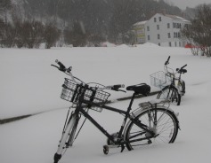 Mackinac Island winter scene of bikes in the snow