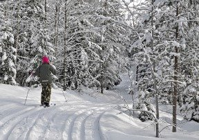 Michigan cross country skiing on Mackinac Island is super!