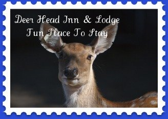Deer Head Inn is a fun Bed and Breakfast Mackinaw CIty lodging choice.