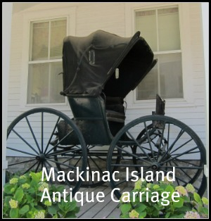 drive yourself carriage rides are fun on Mackinac Island and knowing the history of antique carriages can be quite interesting.